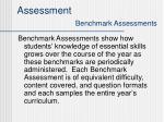 assessment benchmark assessments