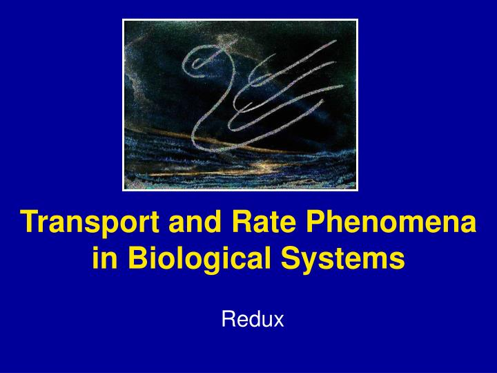 transport and rate phenomena in biological systems n.