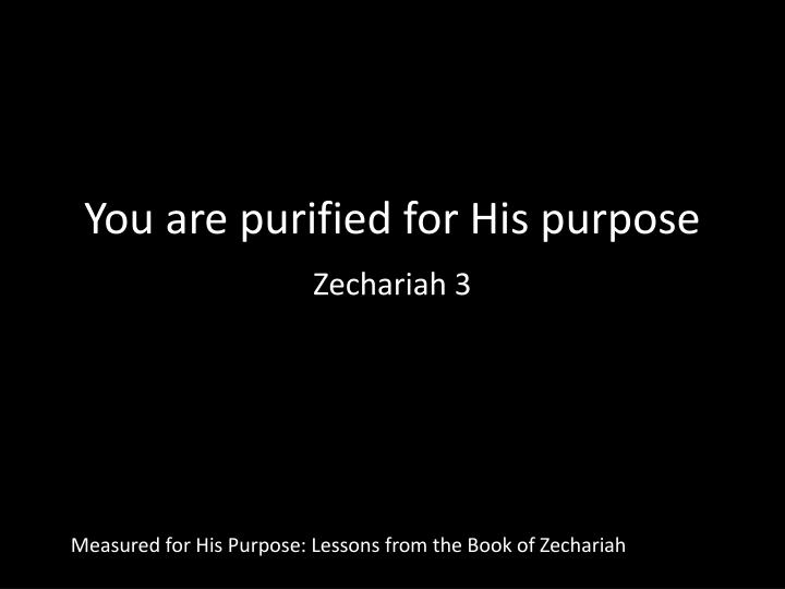 you are purified for his purpose zechariah 3 n.