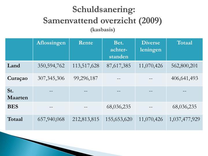 Schuldsanering samenvattend overzicht 2009 kasbasis