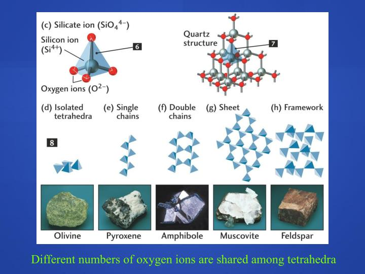 Different numbers of oxygen ions are shared among tetrahedra