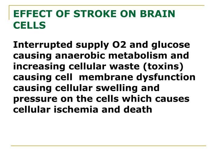 EFFECT OF STROKE ON BRAIN CELLS