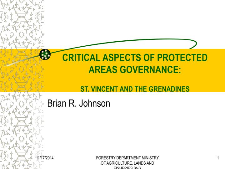 critical aspects of protected areas governance st vincent and the grenadines n.