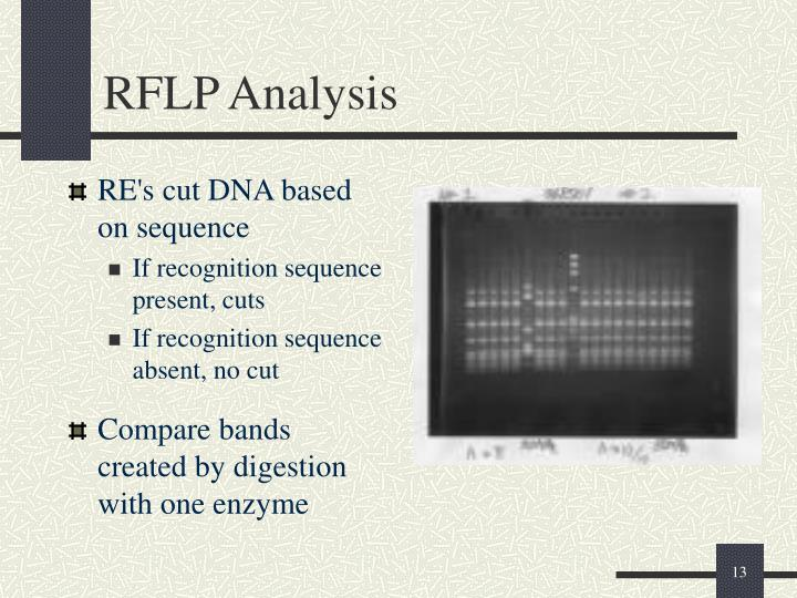 RE's cut DNA based on sequence