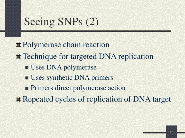 Seeing SNPs (2)