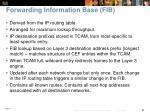 forwarding information base fib