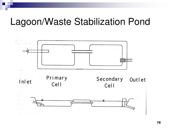 Lagoon/Waste Stabilization Pond