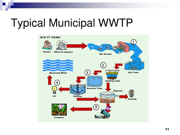 Typical Municipal WWTP