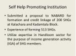 self help promoting institution