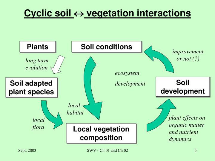 Cyclic soil