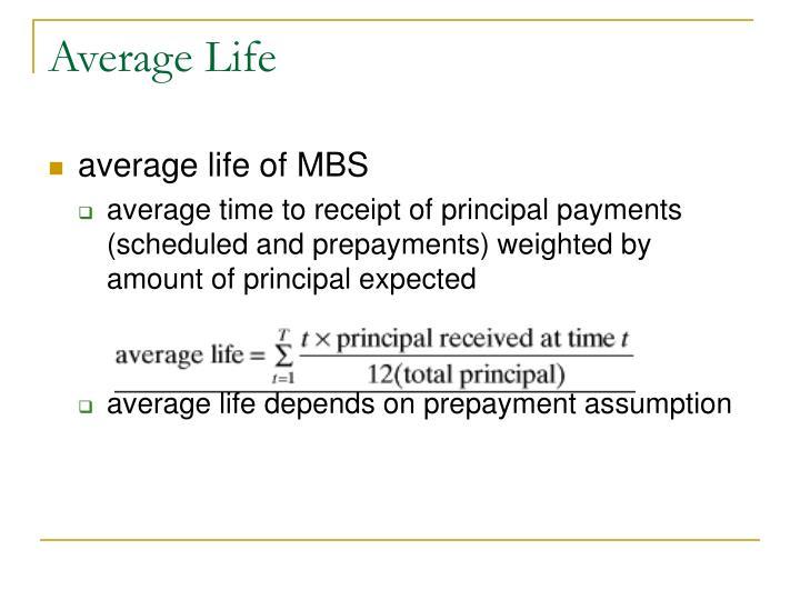 Average Life