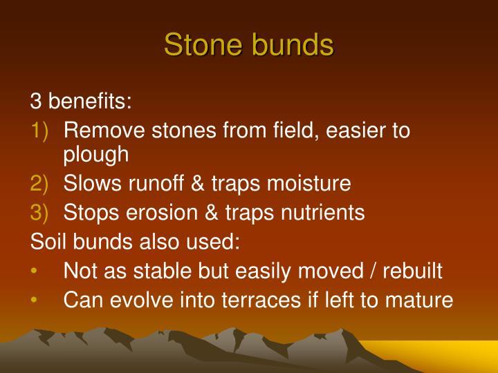 Stone bunds