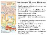 formation of thyroid hormone