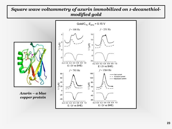 Square wave voltammetry of azurin immobilized on 1-decanethiol-modified gold