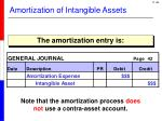 amortization of intangible assets1