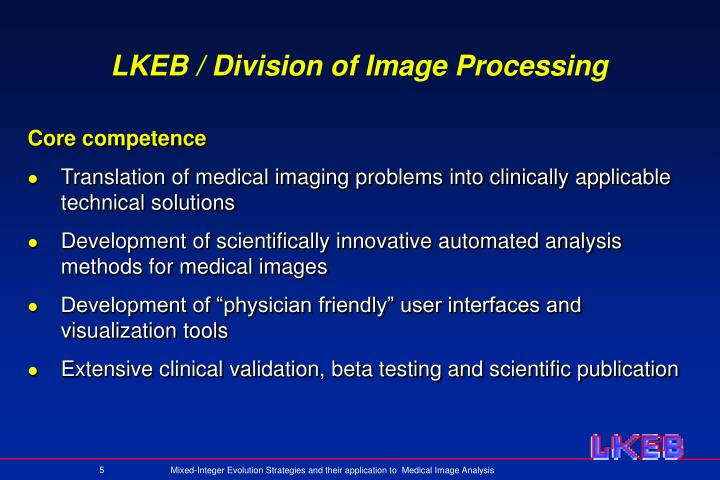 LKEB / Division of Image Processing