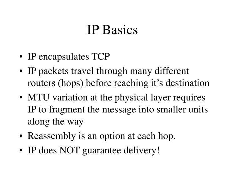 Ip basics1