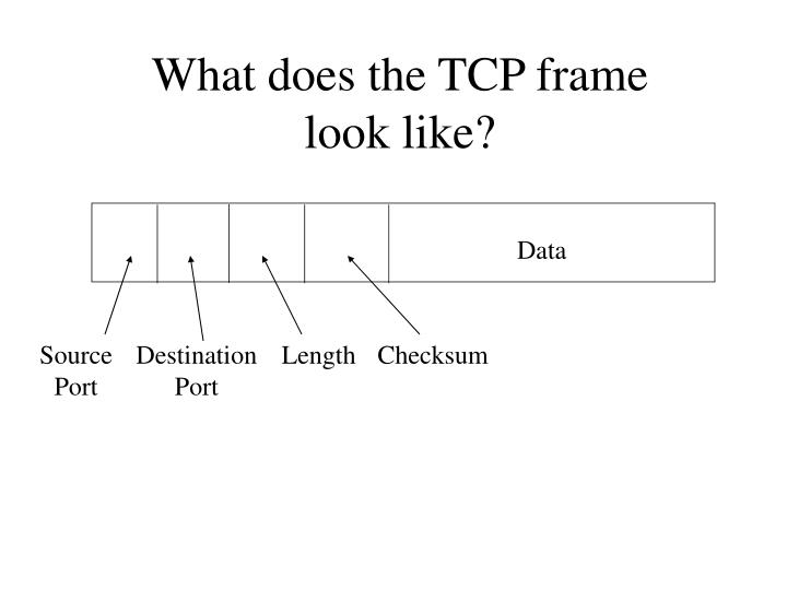 What does the TCP frame look like?
