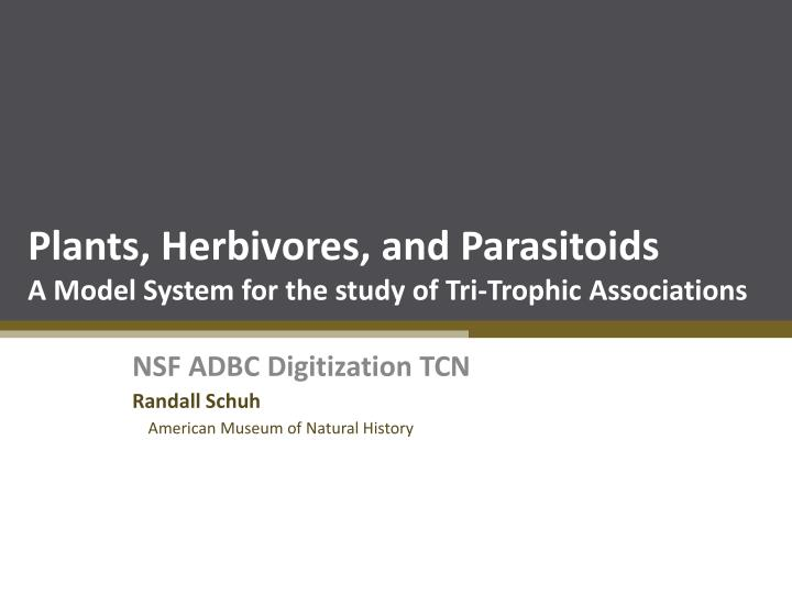 plants herbivores and parasitoids a model system for the study of tri trophic associations n.