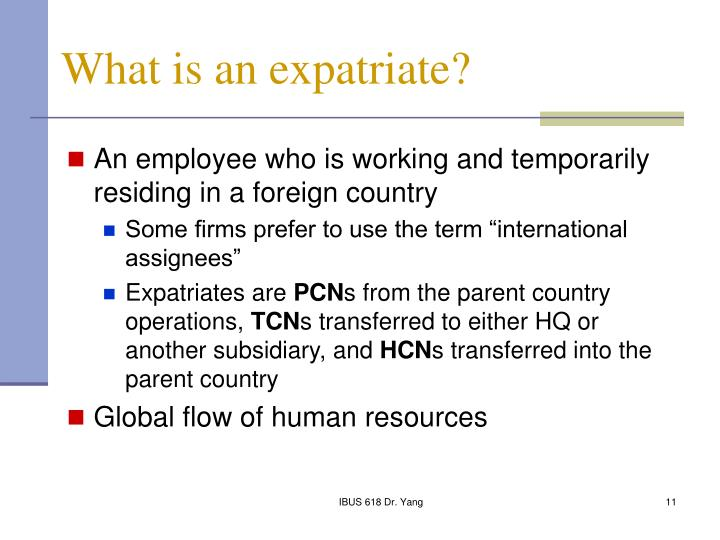 What is an expatriate?