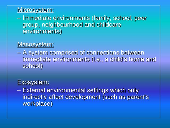 Microsystem: