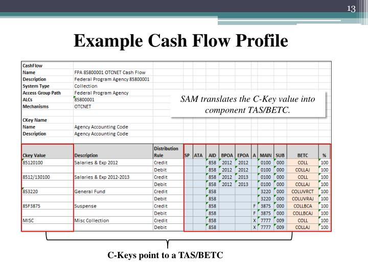 Example Cash Flow Profile