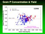 grain p concentration yield1