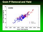 grain p removal and yield1