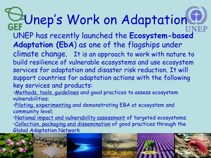 Unep's Work on Adaptation