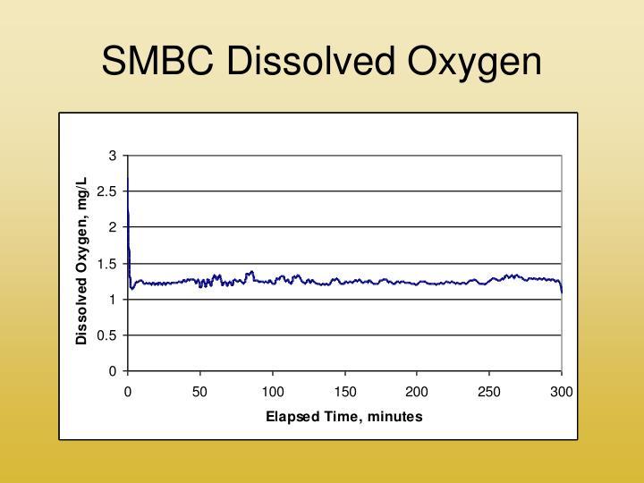 SMBC Dissolved Oxygen