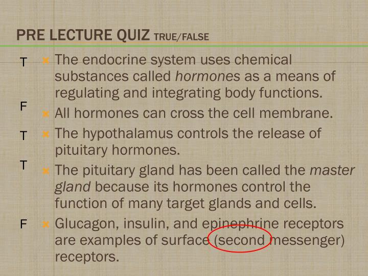 Pre lecture quiz true false