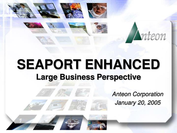 Seaport enhanced large business perspective