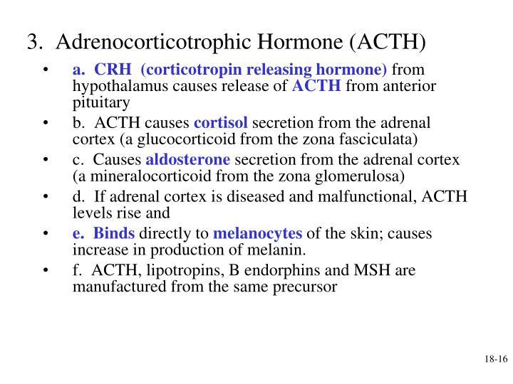 3.  Adrenocorticotrophic Hormone (ACTH)