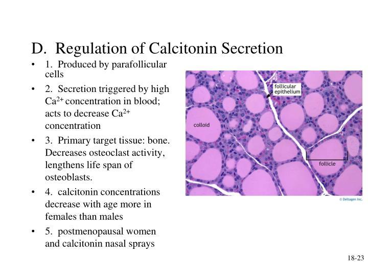 D.  Regulation of Calcitonin Secretion