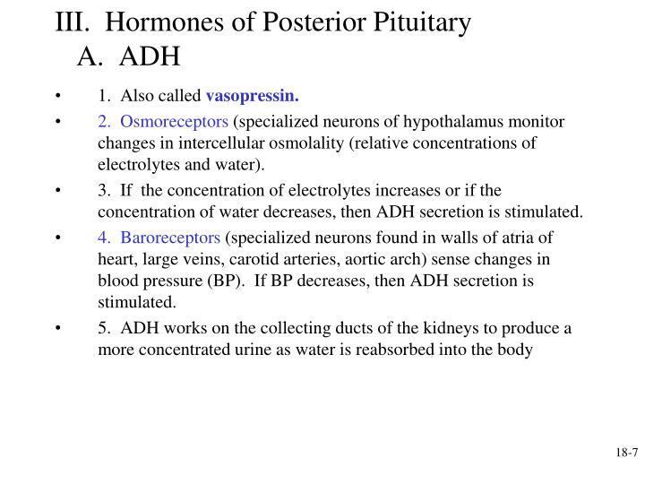 III.  Hormones of Posterior Pituitary