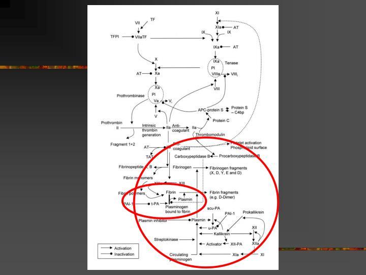 Thrombolysis alteplase pharmacodynamics and pharmacokinetics