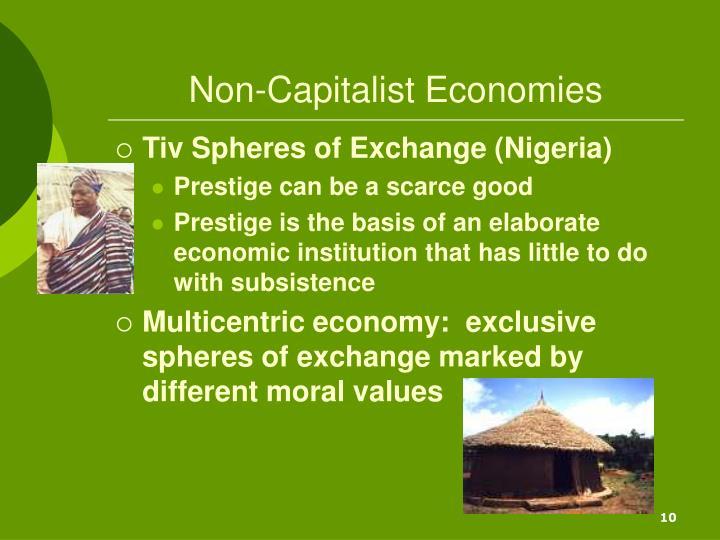 Non-Capitalist Economies