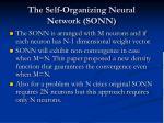 the self organizing neural network sonn