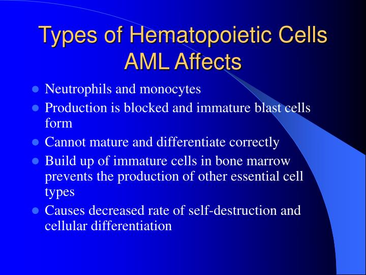 Types of Hematopoietic Cells AML Affects