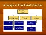 a sample of functional structure