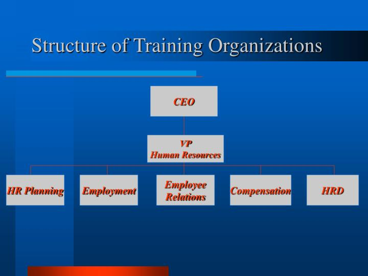 Structure of Training Organizations