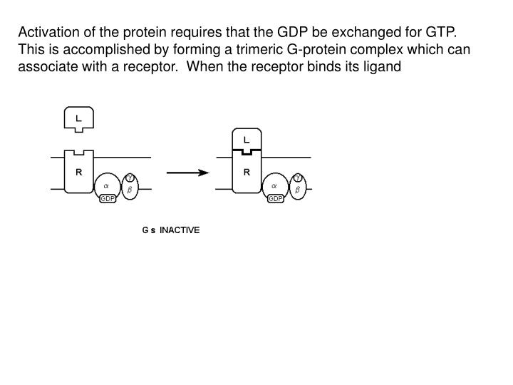 Activation of the protein requires that the GDP be exchanged for GTP.  This is accomplished by forming a trimeric G-protein complex which can associate with a receptor.  When the receptor binds its ligand