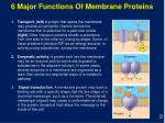 6 major functions of membrane proteins