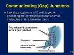 communicating gap junctions