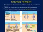enzymatic receptors
