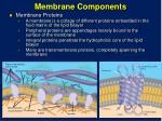 membrane components1