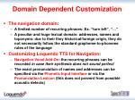 domain dependent customization1
