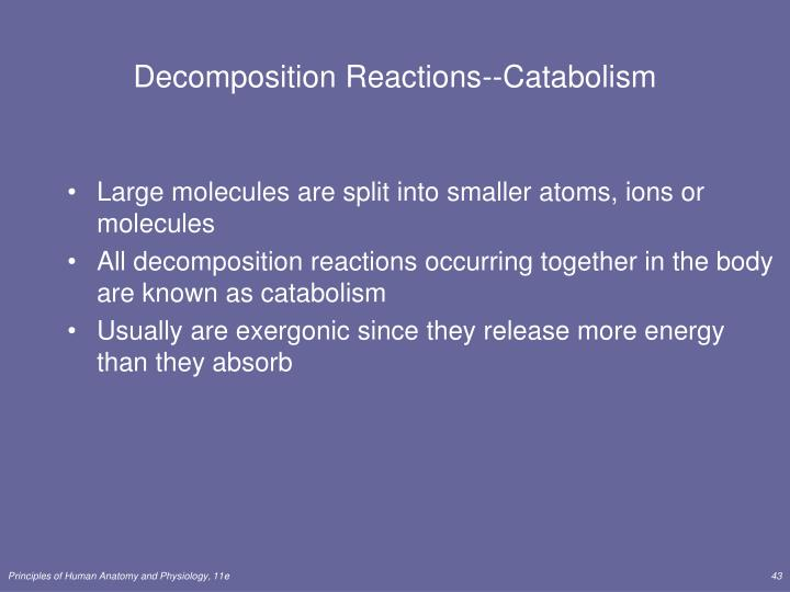 Decomposition Reactions--Catabolism