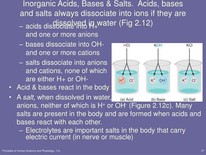 Inorganic Acids, Bases & Salts.  Acids, bases and salts always dissociate into ions if they are dissolved in water (Fig 2.12)