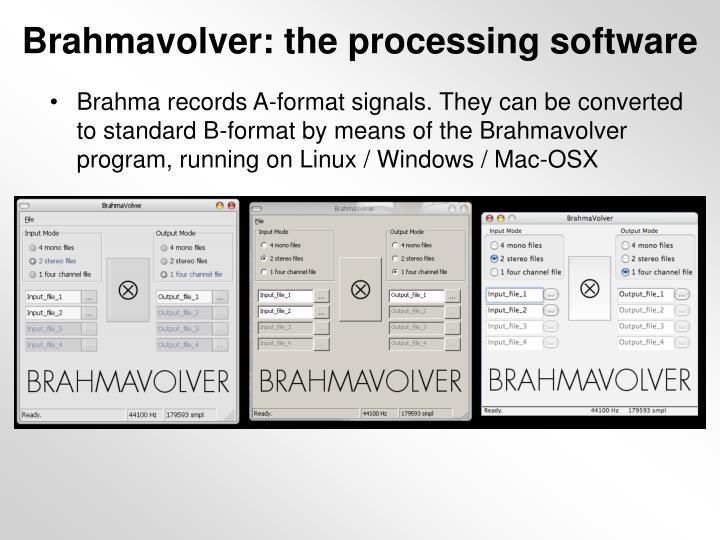 Brahmavolver: the processing software